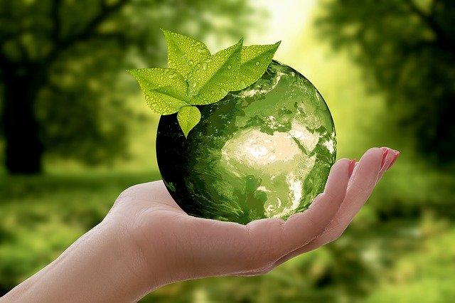 Contratación Pública Ecológica